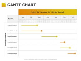 Gantt Chart Timeline Example Ppt Powerpoint Presentation Pictures Files