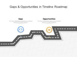 Gaps And Opportunities In Timeline Roadmap