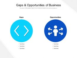 Gaps And Opportunities Of Business