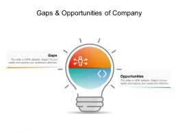 Gaps And Opportunities Of Company