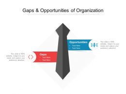 Gaps And Opportunities Of Organization