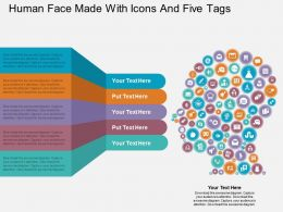 ge Human Face Made With Icons And Five Tags Flat Powerpoint Design