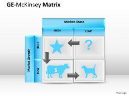 GE McKinsey chart