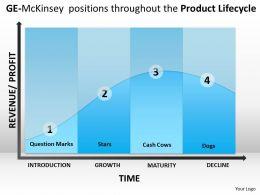 GE McKinsey Markings