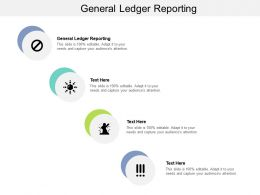 General Ledger Reporting Ppt Powerpoint Presentation Show Picture Cpb