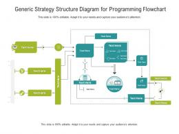 Generic Strategy Structure Diagram For Programming Flowchart Infographic Template