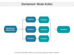 Gentamicin Mode Action Ppt Powerpoint Presentation Layouts Graphics Pictures Cpb