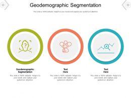 Geodemographic Segmentation Ppt Powerpoint Presentation Icon Samples Cpb