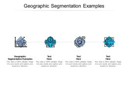 Geographic Segmentation Examples Ppt Powerpoint Presentation Infographics Slides Cpb