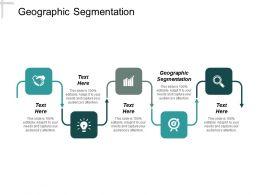 Geographic Segmentation Ppt Powerpoint Presentation Infographics Maker Cpb