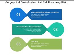 Geographical Diversification Limit Risk Uncertainty Risk Financial Markets Cpb