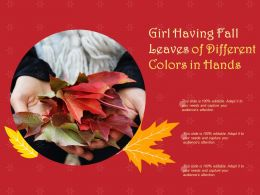 Girl Having Fall Leaves Of Different Colors In Hands