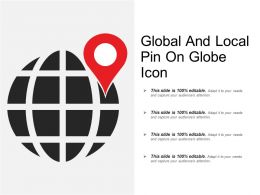Global And Local Pin On Globe Icon