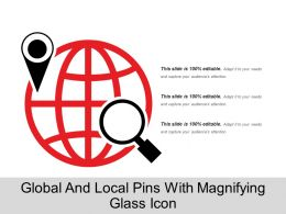 Global And Local Pins With Magnifying Glass Icon