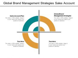 Global Brand Management Strategies Sales Account Plan Strategy Audit Cpb