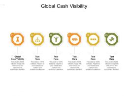 Global Cash Visibility Ppt Powerpoint Presentation File Display Cpb