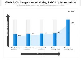 Global Challenges Faced During PMO Implementation