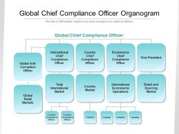 Global Chief Compliance Officer Organogram
