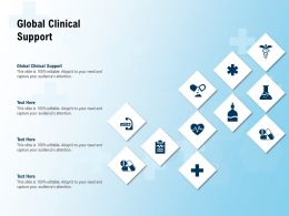 Global Clinical Support Ppt Powerpoint Presentation Pictures Ideas
