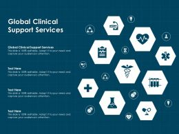 Global Clinical Support Services Ppt Powerpoint Presentation Summary Icon