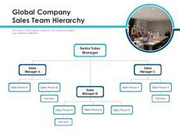 Global Company Sales Team Hierarchy