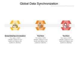 Global Data Synchronization Ppt Powerpoint Presentation Professional Images Cpb