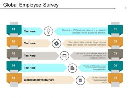 Global Employee Survey Ppt Powerpoint Presentation Infographics Guidelines Cpb