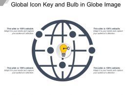 Global Icon Key And Bulb In Globe Image