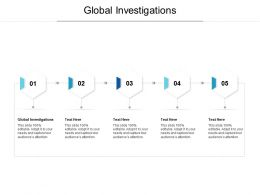 Global Investigations Ppt Powerpoint Presentation Styles Design Templates Cpb