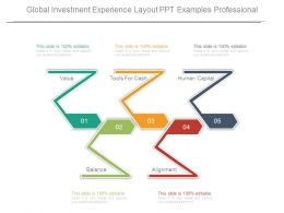 Global Investment Experience Layout Ppt Examples Professional
