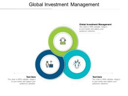 Global Investment Management Ppt Powerpoint Presentation Slides Rules Cpb