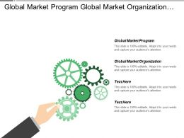 Global Market Program Global Market Organization Financial Analysis
