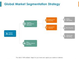 Global Market Segmentation Strategy Multisegment Marketing Ppt Powerpoint Slides