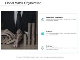 Global Matrix Organization Ppt Powerpoint Presentation Icon Cpb