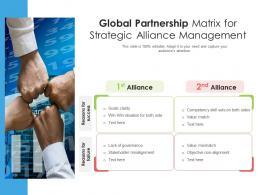 Global Partnership Matrix For Strategic Alliance Management