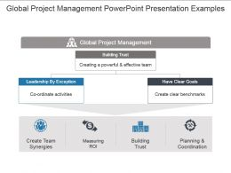 Global Project Management Powerpoint Presentation Examples