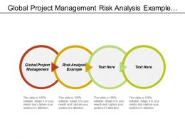 Global Project Management Risk Analysis Example Change Management Plan Cpb