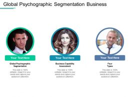 Global Psychographic Segmentation Business Capability Assessment Four Types Cpb