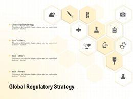 Global Regulatory Strategy Ppt Powerpoint Presentation Outline Show