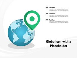 Globe Icon With A Placeholder