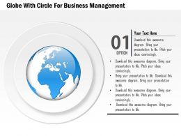 Globe With Circles For Business Management Ppt Presentation Slides