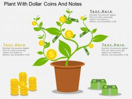 gn Plant With Dollar Coins And Notes Flat Powerpoint Design