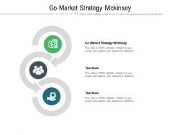 Go Market Strategy Mckinsey Ppt Powerpoint Presentation Outline Example Introduction Cpb