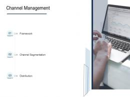 Go To Market Product Strategy Channel Management Ppt Professional