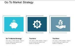 Go To Market Strategy Ppt Powerpoint Presentation Styles Background Designs Cpb