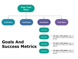 Goals And Success Metrics Ppt Portfolio Graphic Images