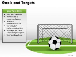 Goals and Targets 13