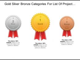 Gold Silver Bronze Categories For List Of Project Services