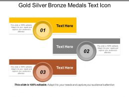 Gold Silver Bronze Medals Text Icon
