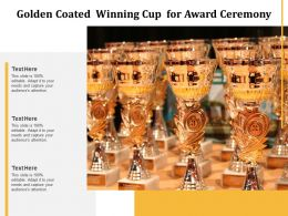 Golden Coated Winning Cup For Award Ceremony